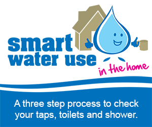 Smart Water Use Button